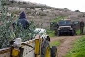 Deir Nizaam, Palestine, 15/12/2009